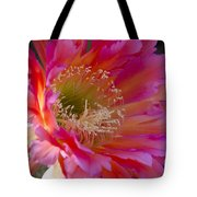 Hot Pink Cactus Flower Tote Bag