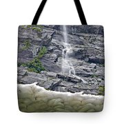 Ice Caves Tote Bag