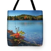 Killarney Provincial Park In Fall Tote Bag