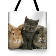 Kitten And Rabbits Tote Bag