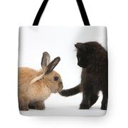 Kitten And Young Rabbit Tote Bag