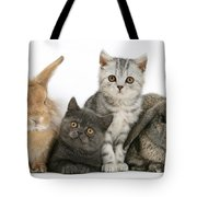 Kittens And Rabbits Tote Bag
