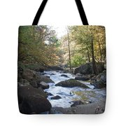 Laurel Creek Tote Bag
