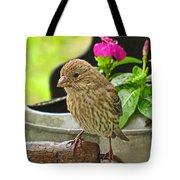 Little Girl Finch Tote Bag