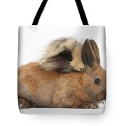 Long-haired Guinea Pig And Young Rabbit Tote Bag