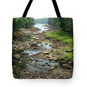 Low Tide In Maine Part Of A Series Tote Bag