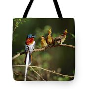 Madagascar Paradise Flycatcher Tote Bag