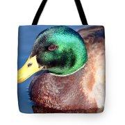 Mallard Drake Portrait Tote Bag