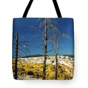 Mammoth Upper Terrace Tote Bag