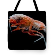 Mesopelagic Amphipod Tote Bag