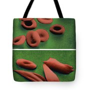 Normal And Sickle Red Blood Cells Tote Bag