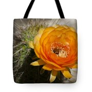 Orange Cactus Flower Tote Bag