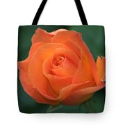 Orange Rose Tote Bag