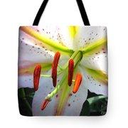 Oriental Lily Hybrid Named Mojave Tote Bag