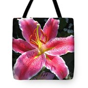 Oriental Lily Named La Mancha Tote Bag