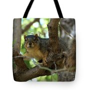 Out On A Branch Tote Bag