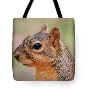 Pine Squirrel Tote Bag