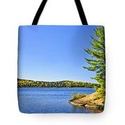 Pine Tree At Lake Shore Tote Bag