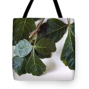 Poison Oak Branch Tote Bag
