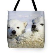 Polar Bear Ursus Maritimus Three Tote Bag