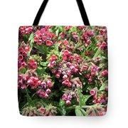 Pulmonaria Named Raspberry Splash Tote Bag