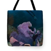 Purple Elephant Ear Sponge With Diver Tote Bag