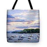River Boats On Danube Tote Bag