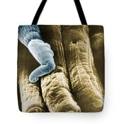 Rods And Cones Tote Bag by Omikron