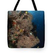 Sea Fans, Fiji Tote Bag