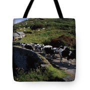 Slea Head, Dingle Peninsula, Co Kerry Tote Bag