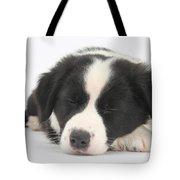 Sleepy Puppy Tote Bag