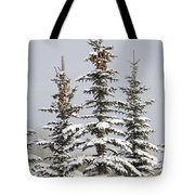 Snow Covered Evergreen Trees Calgary Tote Bag