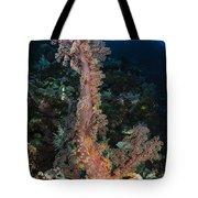 Soft Coral Seascape, Indonesia Tote Bag