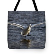 Splashdown Tote Bag