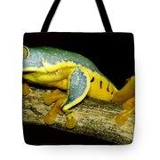 Splendid Leaf Frog Tote Bag