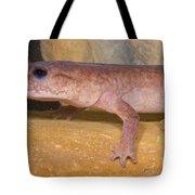Spring Salamander Tote Bag