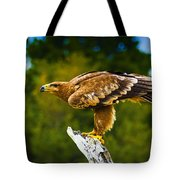 Steppe Eagle Tote Bag