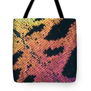 Sunset Moth Urania Ripheus Tote Bag