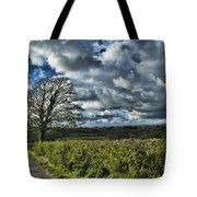Sycamore Tree Tote Bag