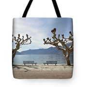 sycamore trees in Ascona - Ticino Tote Bag