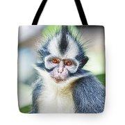 Thomas's Leaf Monkey Tote Bag