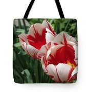 Triumph Tulip Named Carnaval De Rio Tote Bag