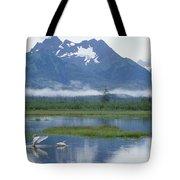 Trumpeter Swan Cygnus Buccinator Pair Tote Bag