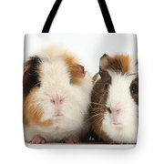Two Guinea Pigs Tote Bag