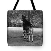 Two Stripes In Black And White Tote Bag