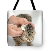 Vet And Kitten Tote Bag