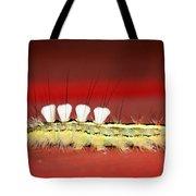 White Tussock Caterpillar Tote Bag