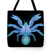X-ray Of Coconut Crab Tote Bag