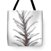 X-ray Of Pinecone With Seeds Tote Bag