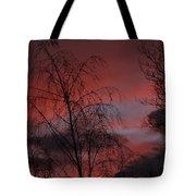 2011 Sunset 1 Tote Bag